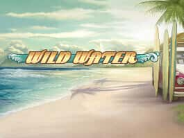 Wildwater