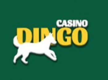CasinoDingo