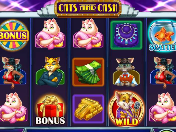cats and cash iframe