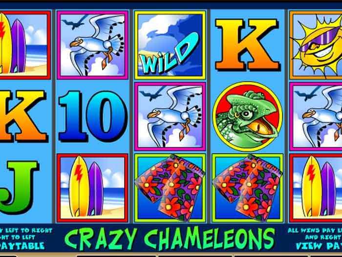 crazy chameleons iframe